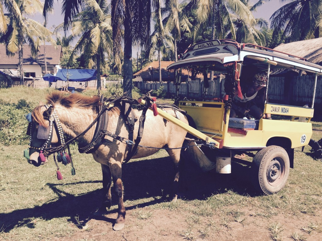 Horse drawn carriages are some of the favorite modes of travel on this island.