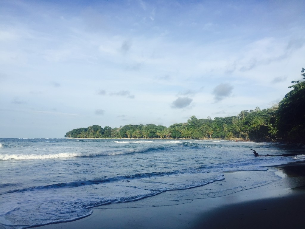 Welcome to beautiful Costa Rica! Caribbean beaches and lush rainforest all around.